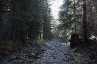 Rohace_2013-Emil_Wiglasz-DSC_9419
