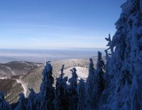 2008-12-29-061