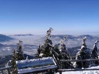 2008-12-29-077