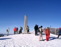 2008-12-29-081