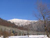 2008-12-29-126